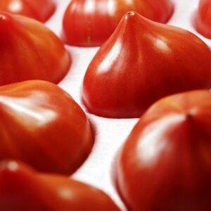 verdura biologica IV gamma | Ingrosso ortofrutta Bologna