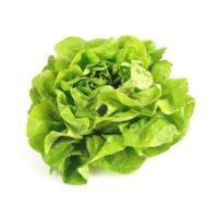 Verdura fresca | ingrosso ortofrutta Bologna