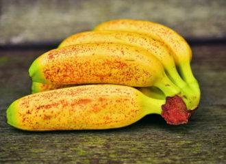 Banane piccole: tre varietà per le strutture sanitarie | SD Fruit - ingrosso ortofrutta