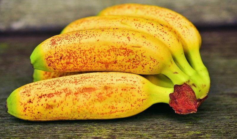Banane piccole: tre varietà per le strutture sanitarie   SD Fruit - ingrosso ortofrutta
