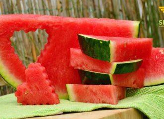 frutta e verdura in estate   SD Fruit - ingrosso ortofrutta Bologna